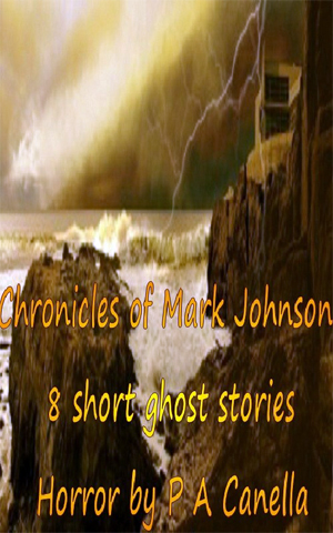 Chronicles of Mark Johnson Writers Online Writing Mystery Horror and Suspense  Review: Chronicles of Mark Johnson