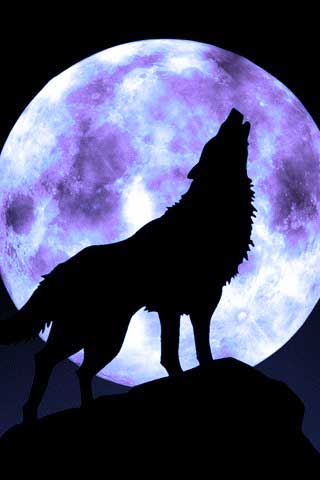 wolf and moon Faithful Moons