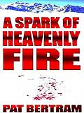Book of the Week A Spark of Heavenly Fire by Pat Bertram