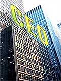 CEO by Patricia E. Gitt