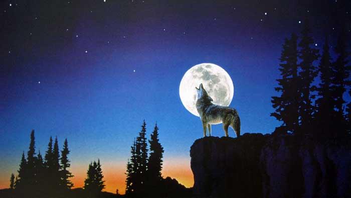moon, Rowina's Lover