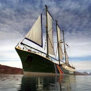 White Sails Become Me