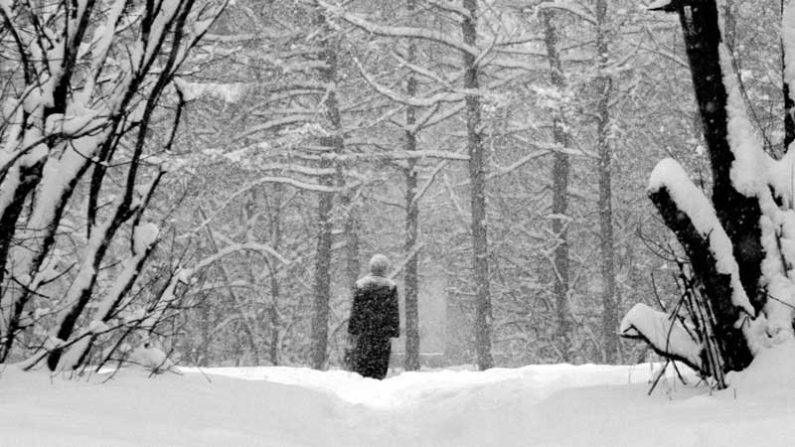 winter day, Deep into Reminiscences
