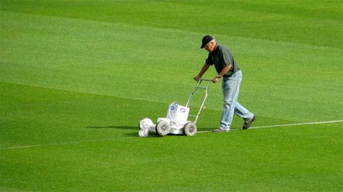 the-groundsman
