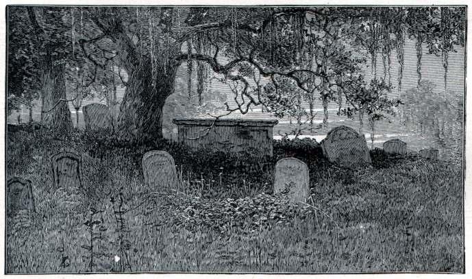 Graveyard Secrets, Graveyard Secrets (1)