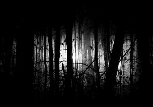 paranormal, Ghost Story (The Wailing Wood 2)