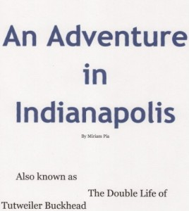 An Adventure in Indianapolis, An Adventure in Indianapolis