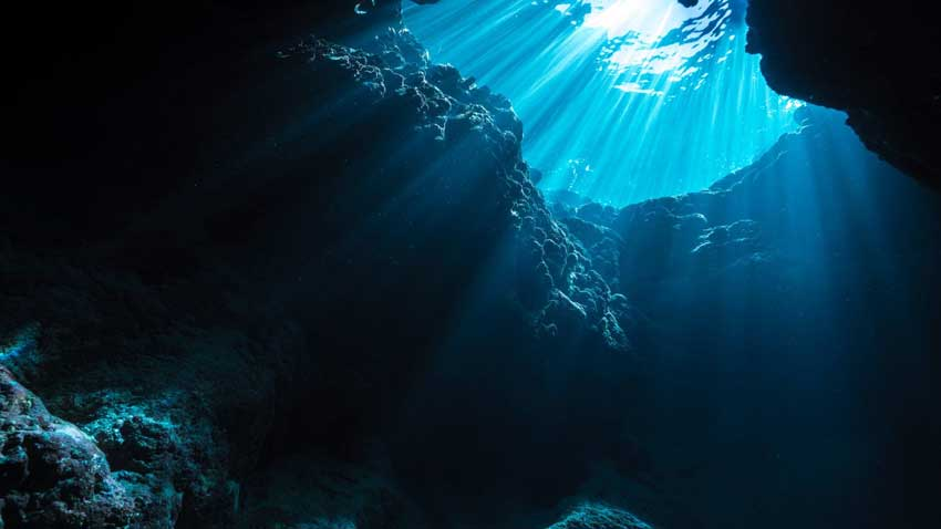 The Deep Sea, The Deep Sea