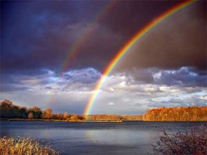 rainbow, Rainbow !