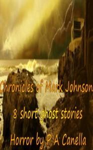 Chronicles of Mark Johnson
