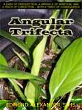 Angular Trifecta, Angular Trifecta (52): Inverse eBookend (Season One Finale)
