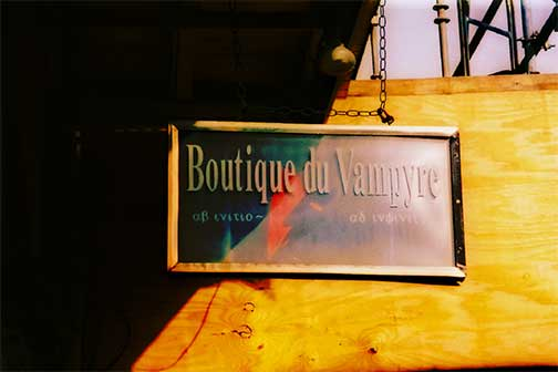 vampire, A Vampire's Guide to New Orleans
