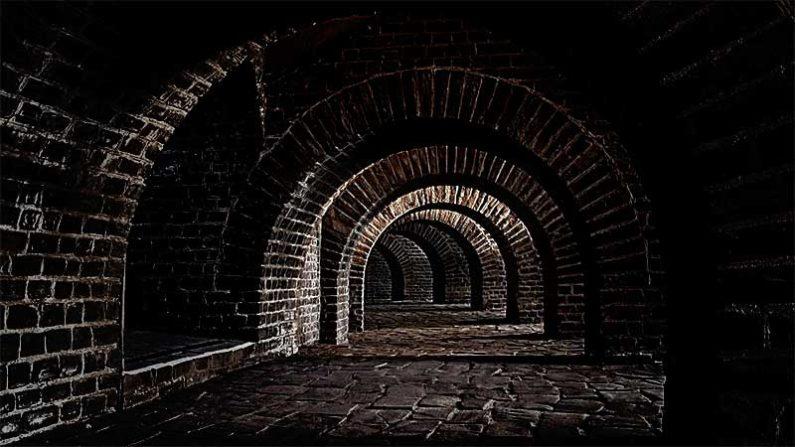 cellar, The Cellar