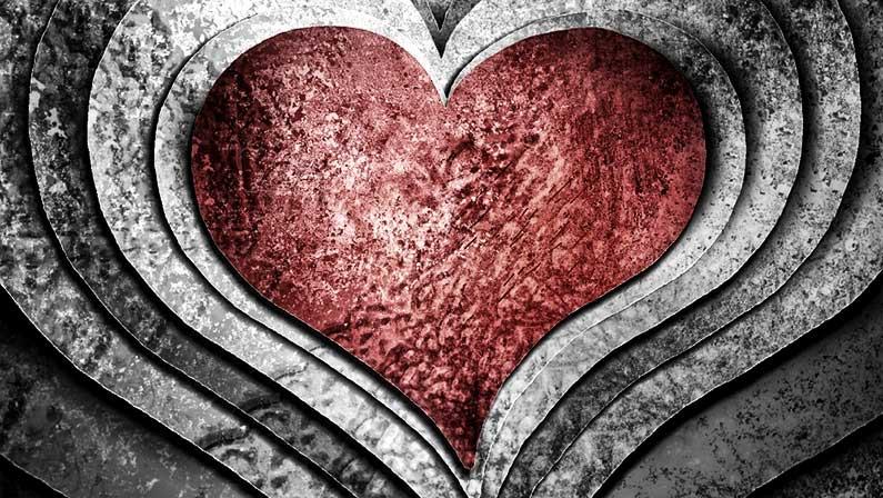 Heart Wall, Heart Wall