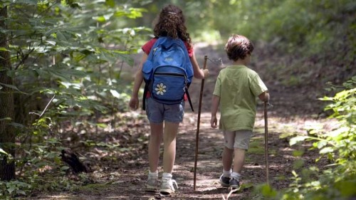 kids-hiking-in-forrest