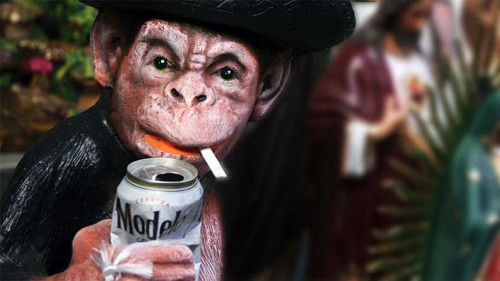 Monkey, 2016: The Year of the Monkey