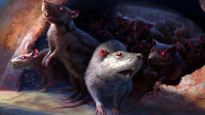 Year of the Rat, 2020: The Year of the Rat